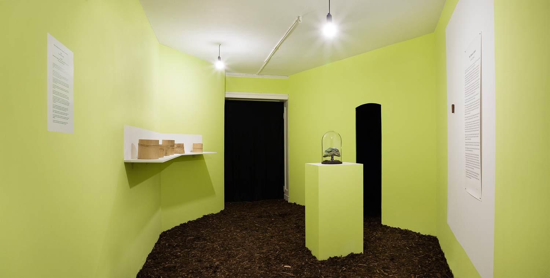 insitu collective Corridor 2: Pachamama